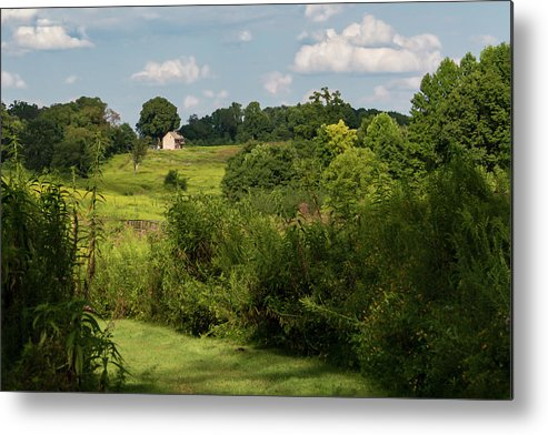 Longwood Gardens Metal Print featuring the photograph Solitude by Guy Shultz