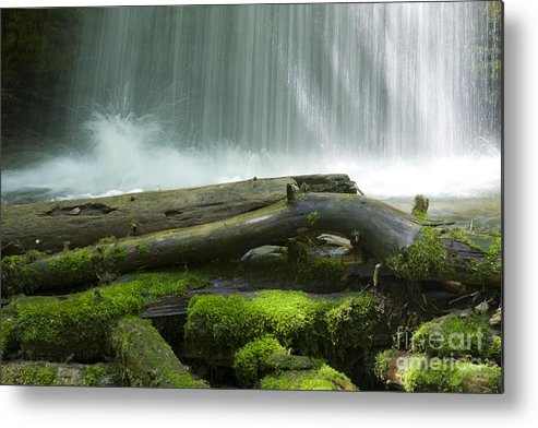 Idaho Metal Print featuring the photograph Splash by Idaho Scenic Images Linda Lantzy