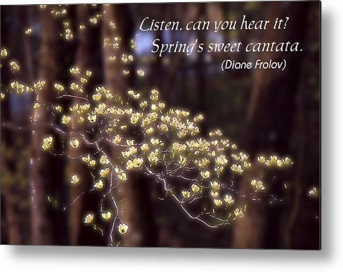 Spring Metal Print featuring the photograph Spring Blossoms Poster by Roger Soule