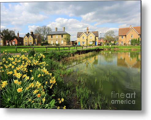 Blue Sky Metal Print featuring the photograph Spring Daffodils, Ramsey Village Pond, Cambridgeshire, England by Dave Porter