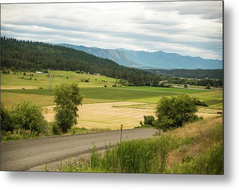 Hay Metal Print featuring the photograph Summer Cutting by Tom Cochran