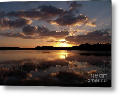 Nature Metal Print featuring the photograph Sun Rise At West Lake In The Everglades by John Harmon
