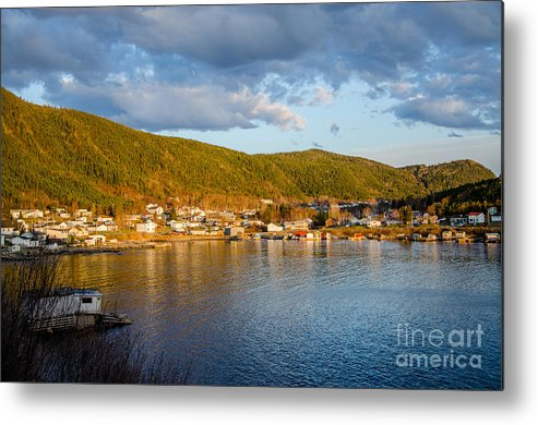Seal Cove Metal Print featuring the photograph Sunny Bay by Lisa Killins