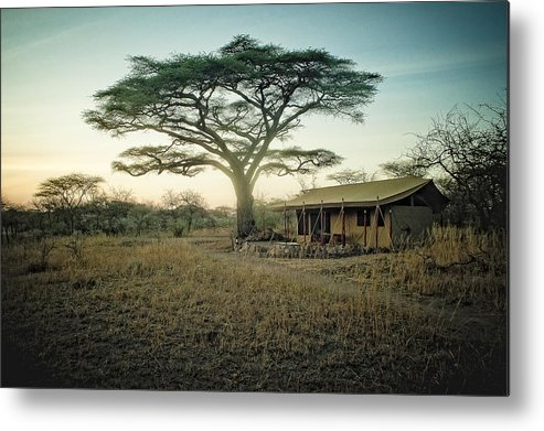 Landscape Metal Print featuring the photograph Sunrise In Tanzania by Justin Carrasquillo