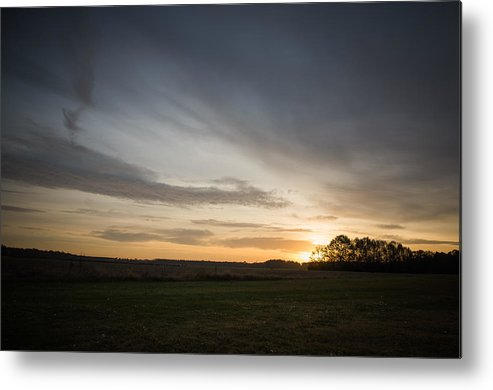 Wildlife Metal Print featuring the photograph Sunrise More Color by Alicia Collins