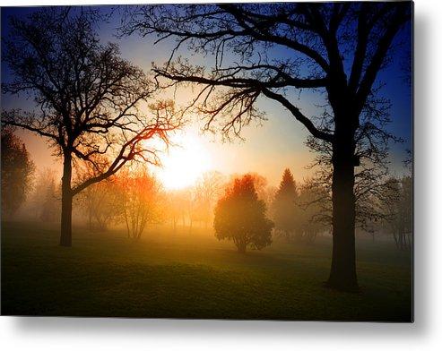 Sunrise Metal Print featuring the photograph Sunrise Through Trees by Donald Erickson
