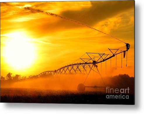 Center Metal Print featuring the photograph Sunset Irrigation by Olivier Le Queinec
