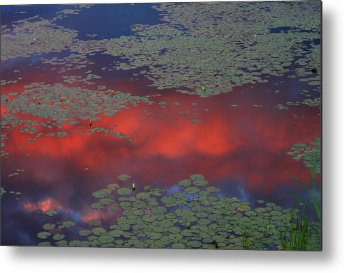 Pond Metal Print featuring the photograph Sunset Reflection In Pond by John Burk