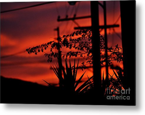 Clay Metal Print featuring the photograph Sunset Sihouettes by Clayton Bruster