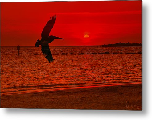 Florida Metal Print featuring the photograph Sunset Silhouette by Mark Fuge