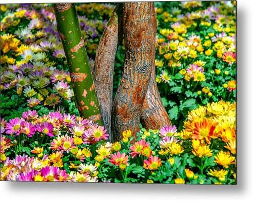 Spring Flowers Metal Print featuring the photograph Surrounded by Az Jackson