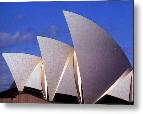 Australia Metal Print featuring the photograph Sydney Harbor Fins by Robert M Brown II