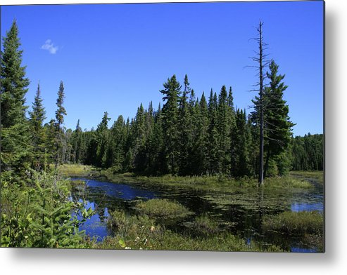 Landscape Metal Print featuring the photograph Thank You Mother by Alan Rutherford