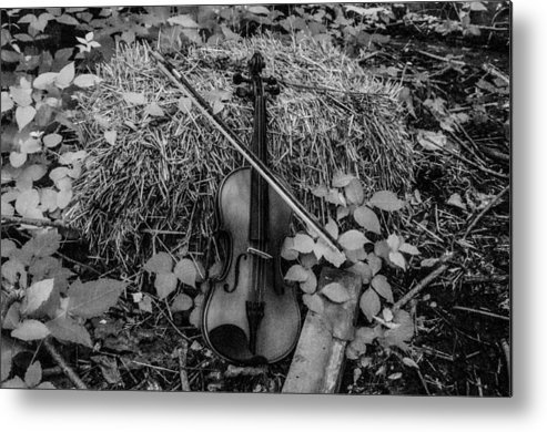 Violin Country Metal Print featuring the photograph The Beauty Of Country by Gerald Kloss