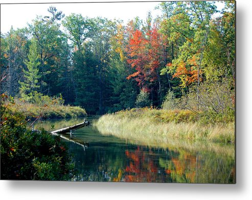 Landscape Metal Print featuring the photograph The Beginning Of Fall by Jennifer Englehardt