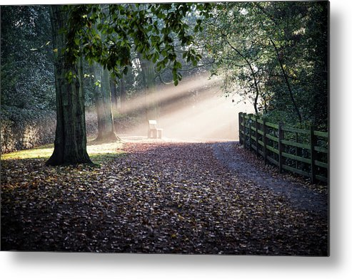 Sun Beams Metal Print featuring the photograph The Bench by Sandi MacLeod