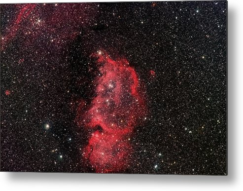 Stars Metal Print featuring the photograph The Emperor by Jim DeLillo