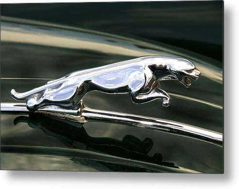 Motormania Metal Print featuring the photograph The Leaping Jaguar by Daniela White