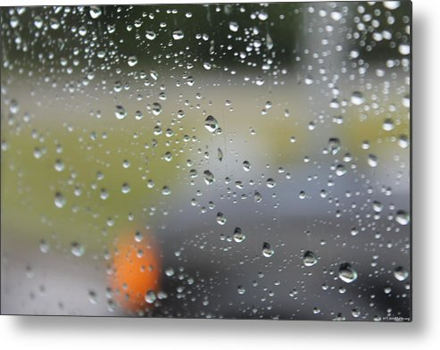 Rain Metal Print featuring the photograph The Natural Lens That Is A Raindrop by Laura Martin