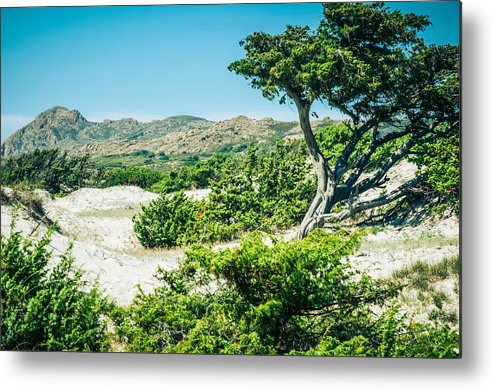Corsica Metal Print featuring the photograph The Oasis by Radek Spanninger