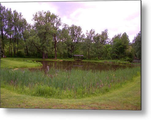 Water Metal Print featuring the photograph The Pond by Thomas Cassant