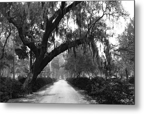 Bonaventure Cemetery Metal Print featuring the photograph The Road Home by Rick Wilkerson