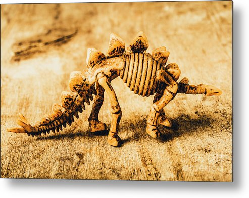 Exhibit Metal Print featuring the photograph The Stegosaurus Art In Form by Jorgo Photography - Wall Art Gallery