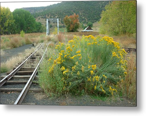 Train Metal Print featuring the photograph The Tracks At Pagosa Junction by Jerry McElroy