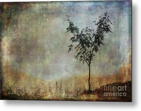 Tree Metal Print featuring the photograph The Young One by Randi Grace Nilsberg
