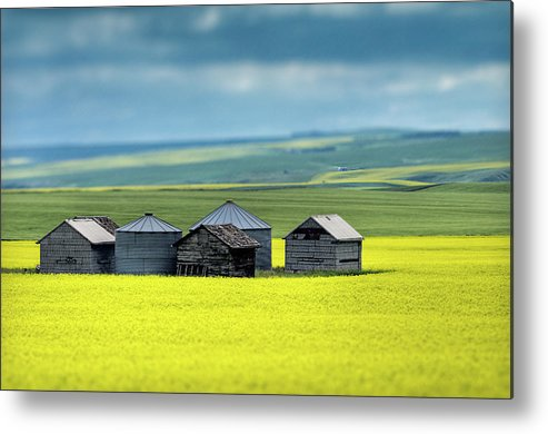 Alberta Metal Print featuring the photograph This Is Alberta No.15 - Prairie Barns by Paul W Sharpe Aka Wizard of Wonders