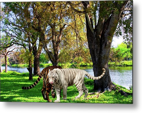 Tigers Metal Print featuring the photograph Tigers By The City by Mayra Pau