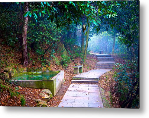 Trail Metal Print featuring the photograph Trail In Woods by James O Thompson