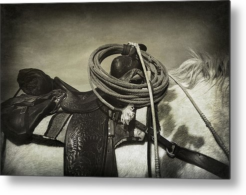 Infrared Metal Print featuring the photograph Trail Ready by Christine Hauber