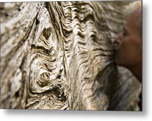 Tree Metal Print featuring the photograph Tree Bark by Dawn Kish