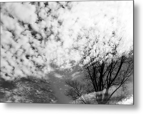 Spirit Metal Print featuring the photograph Tree's Spirit by Munir Alawi