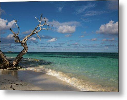 Beach Metal Print featuring the photograph Tropical Beach by Diego Pagani