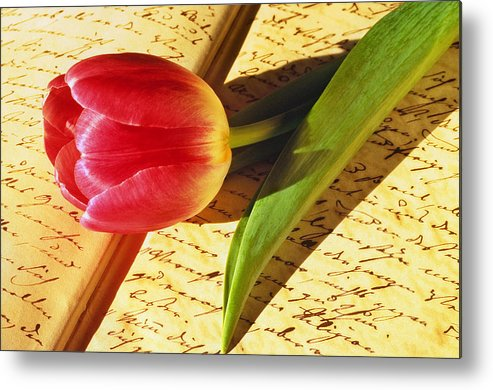 Bloom Metal Print featuring the photograph Tulip On An Open Antique Book by Tony Ramos