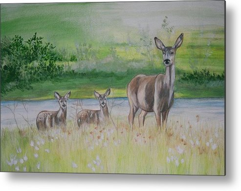 Whitetail Deer Metal Print featuring the painting Twins In The Quabin by Debra Sandstrom