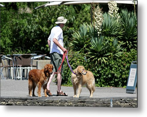 People Metal Print featuring the photograph Two Dogs And Man by Masami Iida