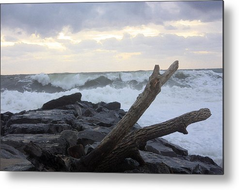 Landscape Metal Print featuring the photograph Up On The Rocks by Mary Haber