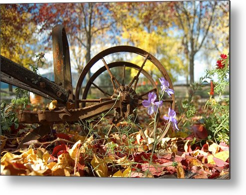 Wagon Wheel Metal Print featuring the photograph Wagon Wheel by Peter Olsen