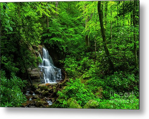 Waterfall Metal Print featuring the photograph Waterfall And Rhododendron In Bloom by Thomas R Fletcher