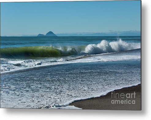 Beach Metal Print featuring the photograph Whale Island by Werner Padarin