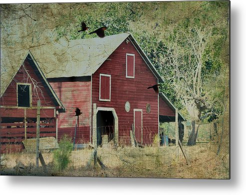 Architectural Metal Print featuring the photograph Where We Land by Jan Amiss Photography