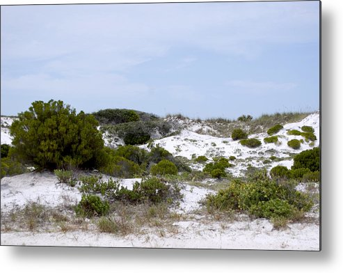 Sand Metal Print featuring the photograph White Sand Dunes by Tina B Hamilton