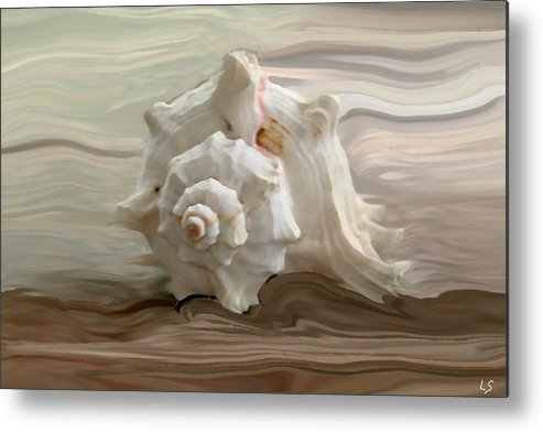 Seashell Metal Print featuring the photograph White Shell by Linda Sannuti