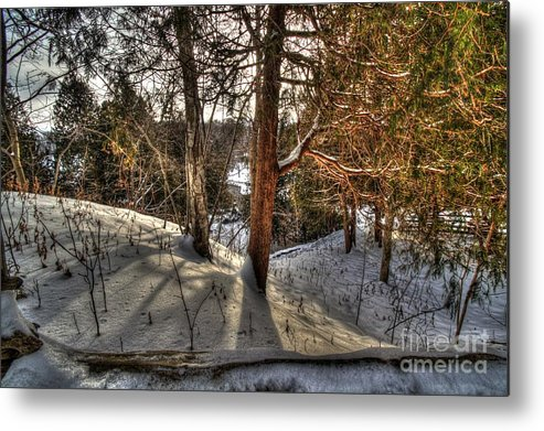 Landscape Woods Winter Cold Snow Forest Sunshine Shadows Metal Print featuring the photograph Winter Shadows by Desmond Bell