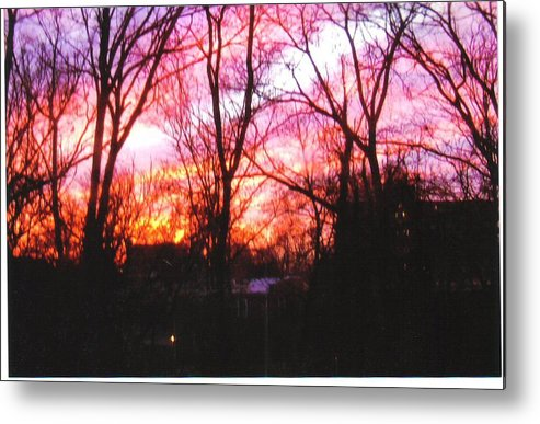 Scenic Metal Print featuring the photograph Winter Sunset by Jonathan Carter
