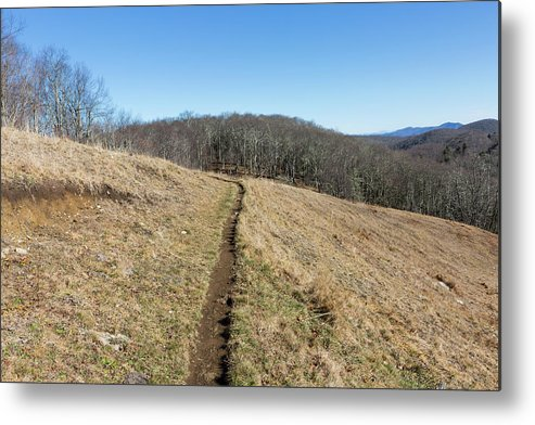 Empty Metal Print featuring the photograph Winter Trail - December 7, 2016 by D K Wall