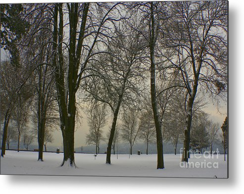 Park Metal Print featuring the photograph Winter Wonderland by Idaho Scenic Images Linda Lantzy